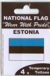 Estonia Country Flag Tattoos.